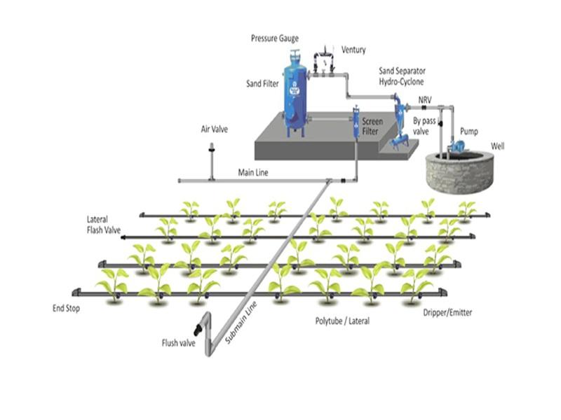 instalación de sistema de riego por goteo - amezcua